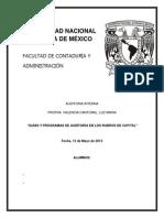 GUÍAS Y PROGRAMAS DE AUDITORIA EN LOS RUBROS DE CAPITAL