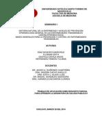 Historia Natural de La Enfermedad - Seminario 1