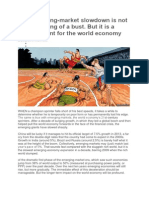 The Emerging Market Slowdown (1)