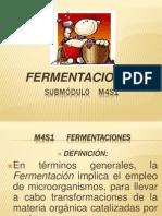 M4S1 FERMENTACIONES.