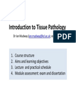 5BBB0206-Tissue Pathology - Lectures 1 - 2 9th Jan 2014