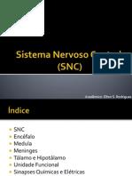sistemanervosocentral-130826124110-phpapp01