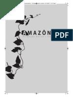 A formação social e cultural da Amazônia.