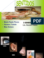 lossentidosunidad2-110312081923-phpapp01