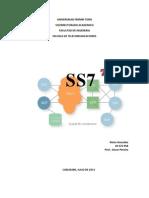 Ss7 Documento