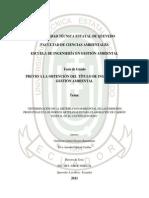 Determinacion de La Distribucion Horizontal de Las Emisiones Producidas en Los Hornos Artesanales Para La Elaboracion de Carbon Vegetal en El Canton Quevedo