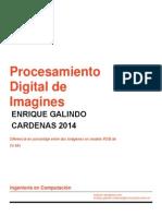 Icopcion - PDI_001