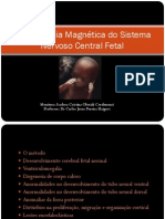 ressonnciamagnticadosistemanervosocentralfetalpdf-130430035537-phpapp02