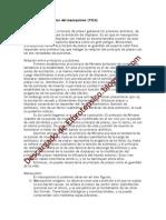 Elproblemaeconómicodelmasoquismo-1924