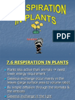 71-6-respirationinplants-120601180309-phpapp01