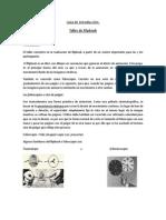 Guía de introducción taller flipbook