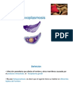 2._Toxoplasmosis_-_copia.pdf