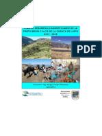 Plan de Desarrollo Agropecuario Parte Media y Alta Cuenca de Lurin, Documento FINAL