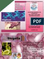 Micro Shigella