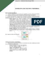 Curso5-Tema8-Patología-Degenerativa-de-Columna-Vertebral-CEU