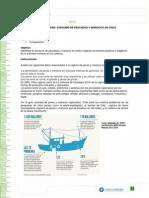 Pauta Actividad- Consumo Pescados y Mariscon en Chile