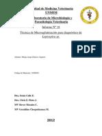 Técnica de Microaglutinación para diagnóstico de Leptospira sp..docx