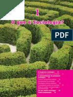 Sociologia Cap 01