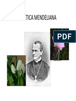 Geneticamendeliana_8549