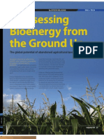 Reassessing Bioenergy From the Ground Up