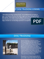 Puppy Training Simi Valley