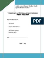 Informe Final Puente Colgante