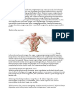 Anatomi Atau Ilmu Urai Adalah Ilmu Yang Mempelajari Susunan Tubuh Dan Hubungan Bagian