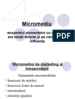 Mediu de Marketing Franzeluta.[Conspecte.md]