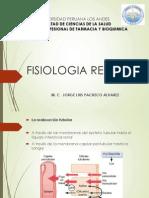 fisiologiarenalii-131209192054-phpapp01