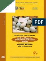 Gallina Mapuche Productora de Huevos