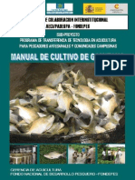 Manual Gamitana