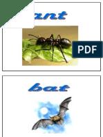 001-Vocabulario Animales en Ingles 01-(Voyaprenderingles.com)