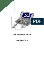 curso_sas1.doc