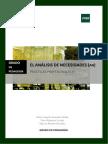 Analisis de Necesidades Practicas Profesionales III