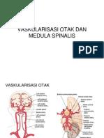 Vaskularisasi Otak Dan Medula Spinalis