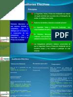 Auditorias Efectivas Modulo III