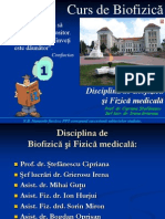 curs_bf_1