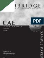 CAE Example Paper #2