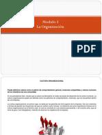 Modulo 3_La Organización