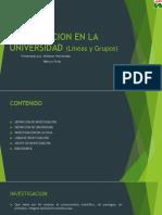 INVETIGACION EN LA UNIVERSIDAD (Líneas y Grupos
