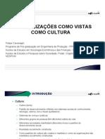Apresentação cultura organizacional.pdf