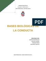 Psicología - Bases Biológicas