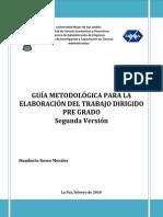 IICCA-PostGrado-Guia_Trabajo_Dirigido.pdf