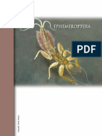 Claves Taxonomicas Ephemeroptera