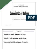 Conociendo El Bullying