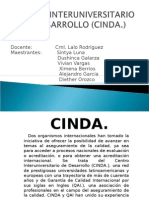 CINDA CHILE