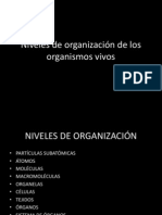Unidad 2 Niveles de organización y Tamaños
