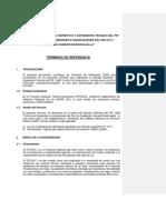 Termino de Referencia Control Inundaciones- Estudio Definitivo