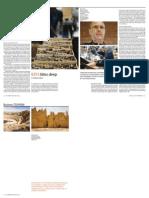 BDS Bites Deep / Federica Marsi, March 2014