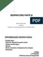 Power Enfermedades Respiratorias